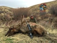 Gary Elliott Nevada Elk