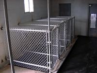 Dog-Kennels-