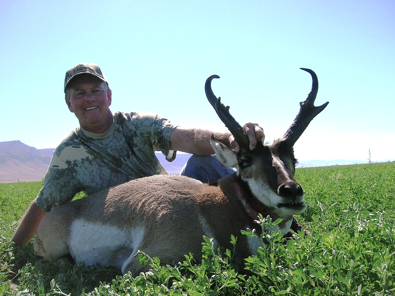 Nevada Antelope Western Wildlife Adventures