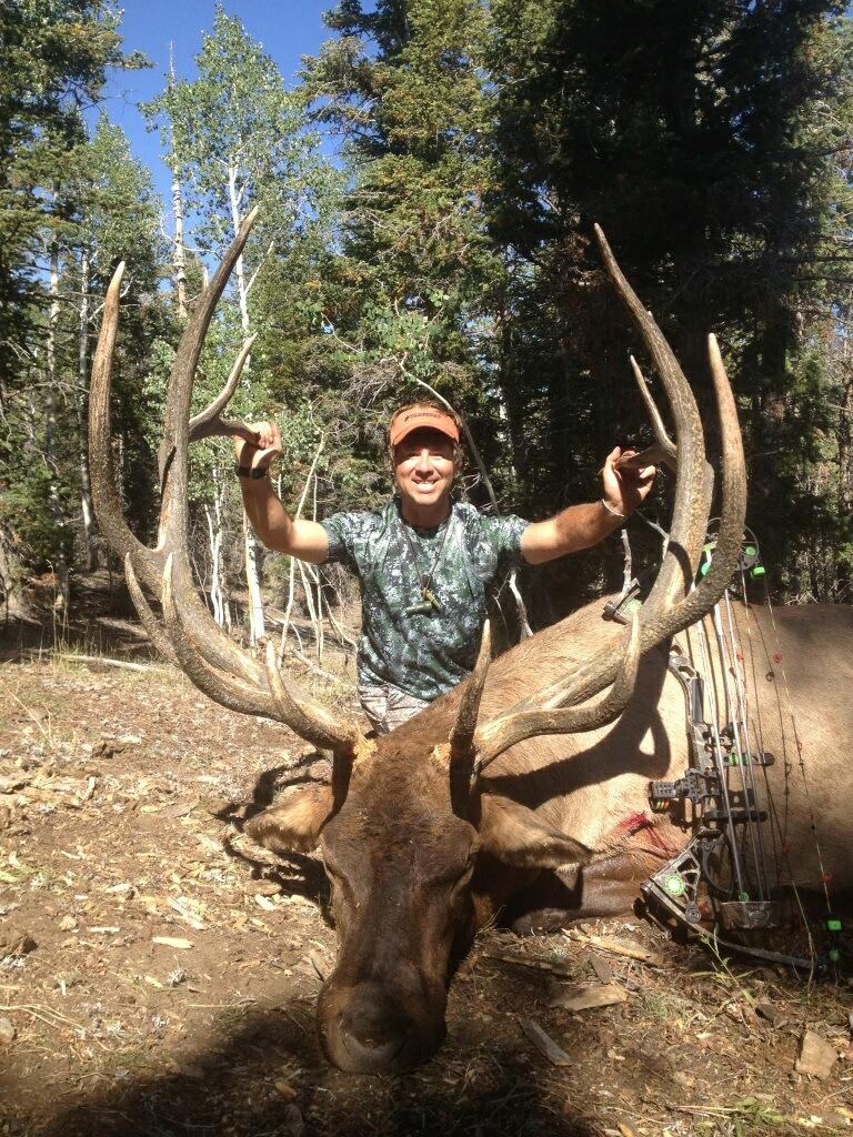 Nevada Elk | Western W...